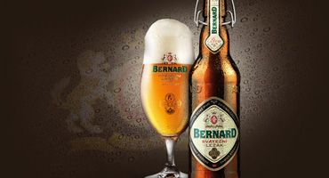 Bernard Celebration Lager 50P